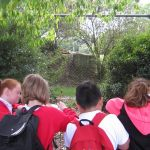 Year 5 Marwell Zoo